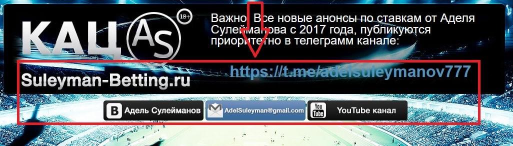 Социальные сети Аделя Сулейманова